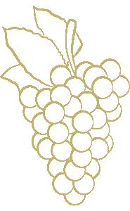 parlons de vous picto raisin